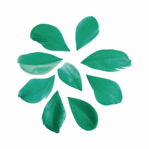 Federn geschnitten piniengrün